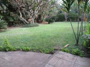 Longonot Guest House, Pensionen  Lilongwe - big - 43