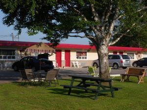 The Silver Birch Motel, Мотели  Goderich - big - 101