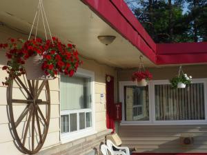 The Silver Birch Motel, Мотели  Goderich - big - 99