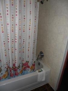 The Silver Birch Motel, Мотели  Goderich - big - 16