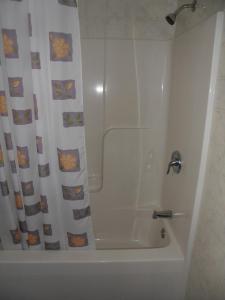 The Silver Birch Motel, Мотели  Goderich - big - 105