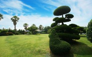 Jeju Dioville Pension, Case vacanze  Seogwipo - big - 26
