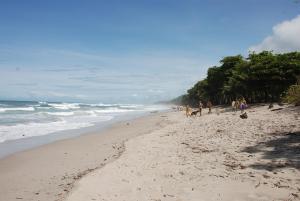 Villas Solar, Виллы  Santa Teresa Beach - big - 82