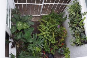 Casa sicarú, Apartmány  Oaxaca City - big - 16