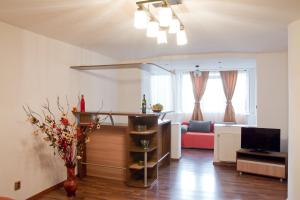Apartament Central Onix, Appartamenti  Braşov - big - 5