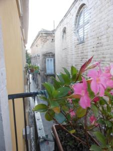 Palazzo Antica Via Appia, Bed and Breakfasts  Bitonto - big - 34