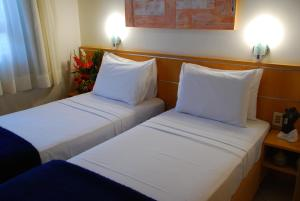 Superior Double or Twin Room with Mountain View