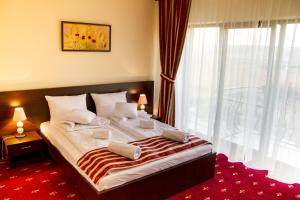 Hotel Axa Travel, Отели  Sebeş - big - 4