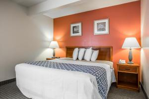 Cloverleaf Suites - Columbia, SC, Hotely  Columbia - big - 13