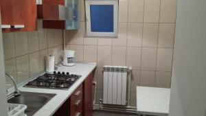Apartment Jardin, Апартаменты  Бухарест - big - 3