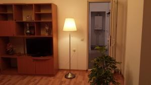 Apartment Jardin, Апартаменты  Бухарест - big - 10