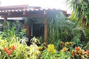 Costa Verde Inn, Aparthotels  San José - big - 40