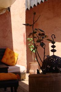 Riad Menthe Et Citron, Riads  Meknès - big - 1
