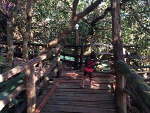 Tree Top Eco-Lodge, Lodge  Banlung - big - 15