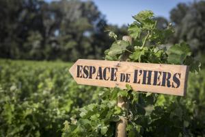 Espace de l'Hers, Pensionen  Châteauneuf-du-Pape - big - 70