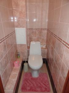 Bon Voyazh Apartments, Appartamenti  Velikiye Luki - big - 5