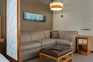 Pokój z łóżkiem typu king-size, rozkładaną sofą i widokiem na okolicę