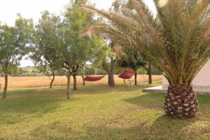 Agriturismo da Remo, Bauernhöfe  Magliano in Toscana - big - 24