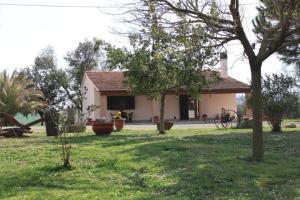 Agriturismo da Remo, Bauernhöfe  Magliano in Toscana - big - 22