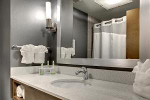 Holiday Inn Express & Suites Albany, Hotels  Albany - big - 3
