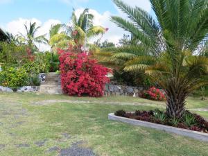 Residence Foulsafat, Chaty  Port Mathurin - big - 10
