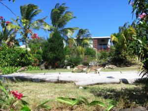 Residence Foulsafat, Kunyhók  Port Mathurin - big - 42