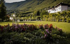 Albergo La Romanella, Hotely  Spinone Al Lago - big - 11