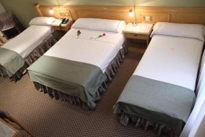 Gran Hotel Ailen, Szállodák  Buenos Aires - big - 15