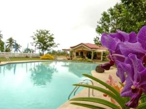 Camiguin Highland Resort, Курортные отели  Mambajao - big - 19