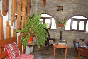 Casa Leonor, Venkovské domy  Vejer de la Frontera - big - 29