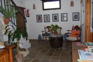 Casa Leonor, Venkovské domy  Vejer de la Frontera - big - 1