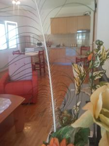 Gjole Apartments, Apartmanok  Lagadin - big - 23