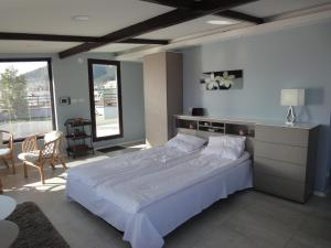 Joan Apartments & Spa, Appartamenti  Skopje - big - 77