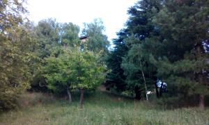 Guest House Vidmar, Гостевые дома  Сремски-Карловци - big - 26