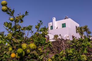 Eco Finca Verde, Загородные дома  Arrieta - big - 10