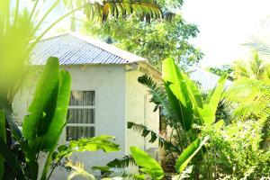 The Ravenala Attitude, Resort  Balaclava - big - 61