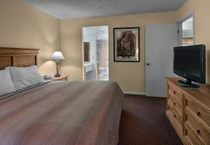 Premier King Suite with Sofa Bed