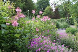 Cascades Gardens, Bed & Breakfasts  Matlock - big - 22