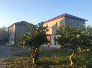 Гостевой дом Leto land, Пицунда