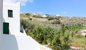 Manos Studios, Apartments  Platis Yialos Mykonos - big - 62