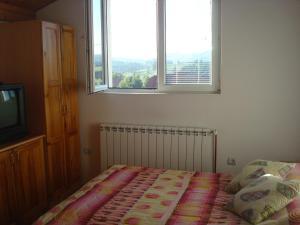 Apartments Zlatiborski visovi, Appartamenti  Zlatibor - big - 39