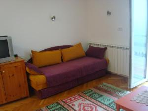 Apartments Zlatiborski visovi, Appartamenti  Zlatibor - big - 58