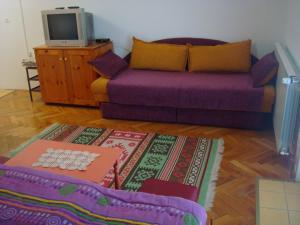 Apartments Zlatiborski visovi, Appartamenti  Zlatibor - big - 64