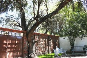 El Rincón del Mezquite, Дома для отпуска  Tequisquiapan - big - 3