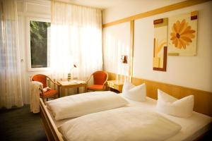 Hotel Gasthof Wasserschloß - Hochstadt am Main