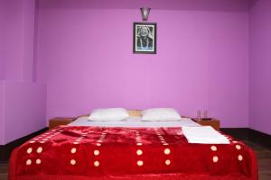 Hotel valley view, Hotely  Pelling - big - 3