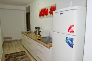 Studio Premium Mureșenilor, Апартаменты  Брашов - big - 8