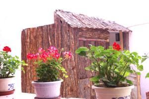 Yiwo Inn, Ubytování v soukromí  Lhasa - big - 10