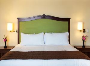 Hotel Francia Aguascalientes, Hotely  Aguascalientes - big - 14