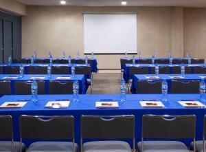 Hotel Francia Aguascalientes, Hotel  Aguascalientes - big - 40